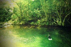 川で遊んでます。。。僕は風邪気味、陸上待機。。。(^_^;)