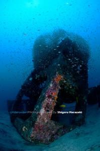 暗い漁礁。。。(^_^;)