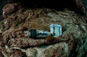 一湊タンク下-6m付近の水温ロガー