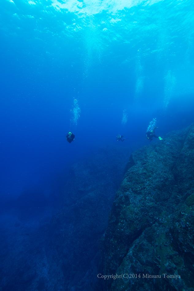 現在はゼロ戦よりも漁礁がスゴイ!