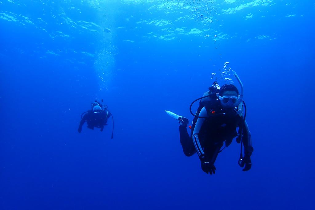 青々とした夏のような海