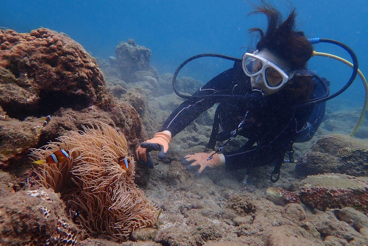 潜水時間60分の体験ダイビング(笑)